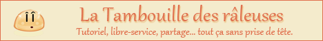 Mini-bannière 468x60 - La Tambouille des Râleuses