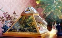 Раскрытые тайны Майданских Пирамид 1219330563_5