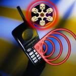 Пирамида и излучение мобильных телефонов 1221827579_5