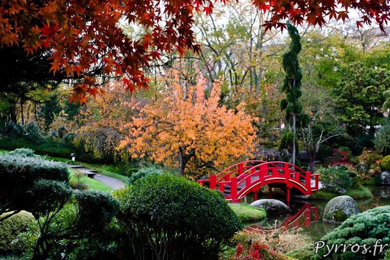 [Jeu] Association d'images - Page 3 IMG_3644_Jardin-Japonais-de-Toulouse