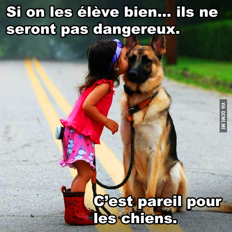 coucou ! - Page 2 Quebecmeme_JtPMA_full
