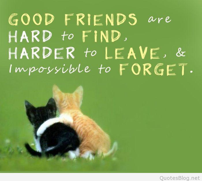 Poruka prijatelju - prijateljici - Page 5 Best-friend-quotes