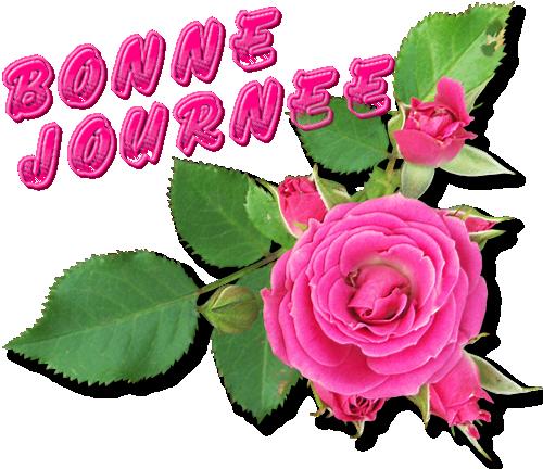 Jour de semaine, bonjour en gif et en image  - Page 40 M8sPrNAoJB_CG5j5-VSm2Z68rIY