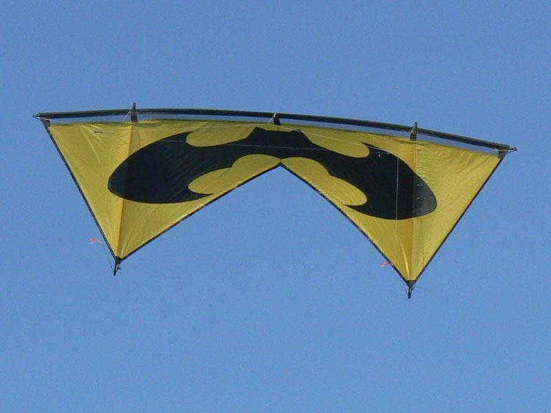 Nananana Batman !! Revo_bat3