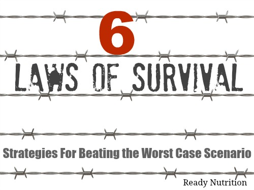 The Six Laws of Survival: Strategies For Beating the Worst Case Scenario 6laws