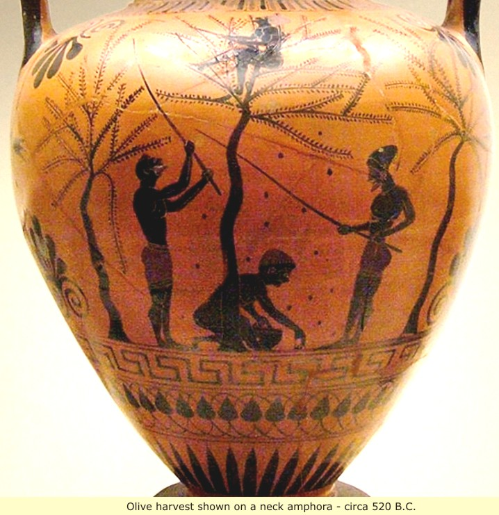 study of Black Mediterranean History, via Coin and Pottery Pottery_3