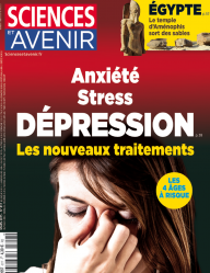 Dépression, stress … et bipolarité… - Page 2 13717806