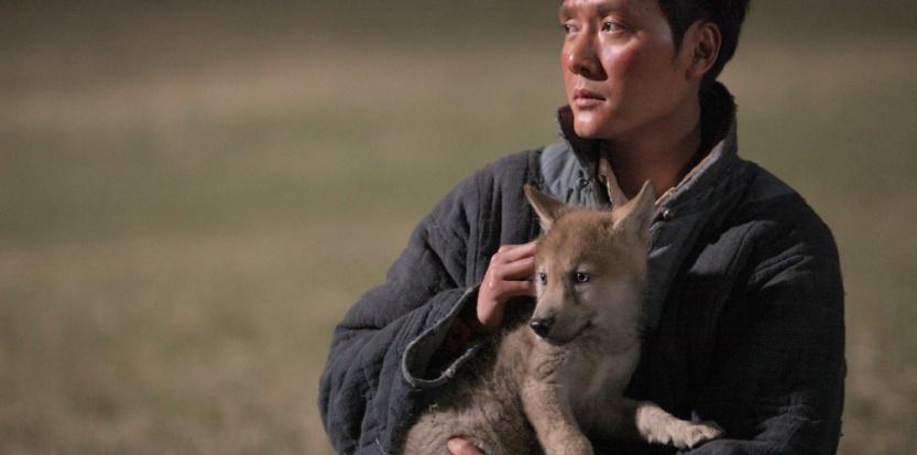 Le dernier loup : un film hommage à la liberté ! Par Morgane Kergoat 13739014