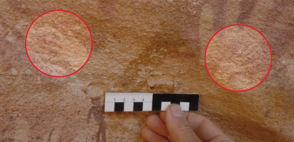 En Égypte, des empreintes relevées sur les parois de grottes ornées sont désormais attribuées à des reptiles 15126399