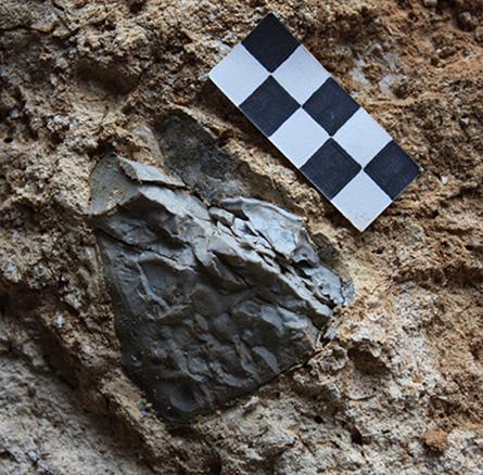 Il y a 800.000 ans, l'Homme allumait un premier feu en Europe 15498663