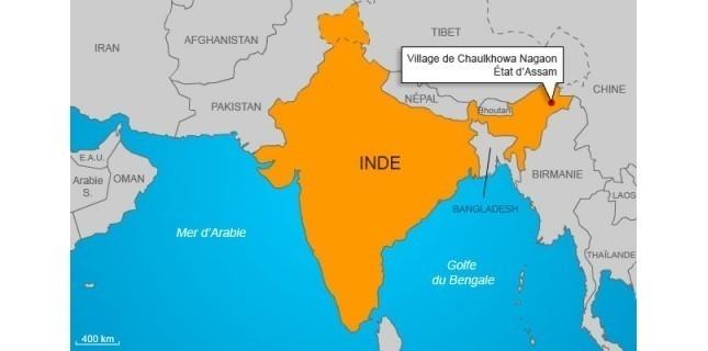Des araignées géantes sèment la panique en Inde 3829065