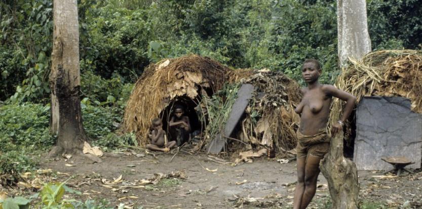 Histoire des hommes perdus : pygmées et andamanais 7460776