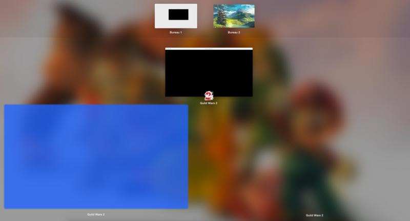 Guild Wars 2 : Launcher tout noir, rien de visibile C0c2d5d3dfd1784e4b290842d932188a6d5a350d