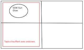 Questionnement environnement. (terrarium E.M ) - Page 2 1912e12d0bb5208fc869b057740be2301d15bdf8
