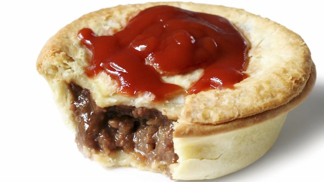 Sentain OOC --ONE CHARACTER SLOT AVAILABLE-- 827687-aussie-meat-pie-and-sauce
