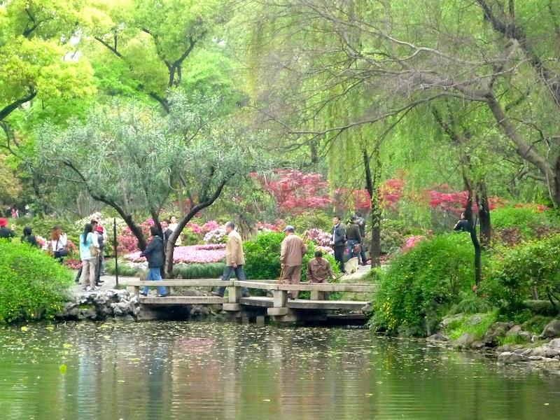 Sozhou, grad sa najlepšim baštama na svetu Lush-vegetation
