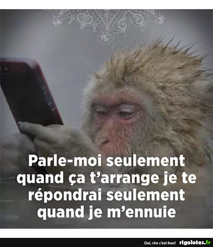 on parle ? 20190214