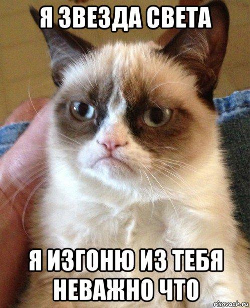 Мемы от Кота Бегемота и от форумчан Ugryumyy-kot_231184618_orig_