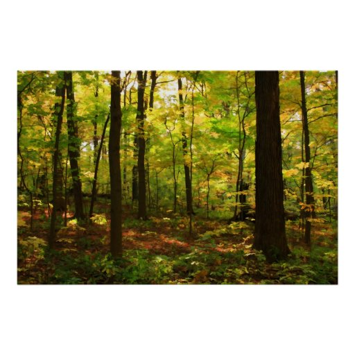 Bocage Foret_derable_posters-re5d3f1becd524e81986b8ee1ae924c78_w2u_8byvr_512