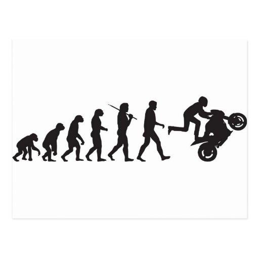 Fotos engraçadas Evolution_wheelie_postcard-r087ad86c9e45449a9ce57b9664a8b4d7_vgbaq_8byvr_512