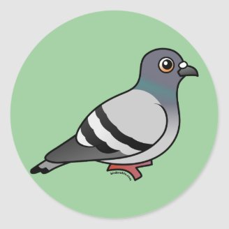 Dovii Cute_rock_pigeon_classic_round_sticker-r0ac2c2ad662041e9b609620834698f57_v9waf_8byvr_328