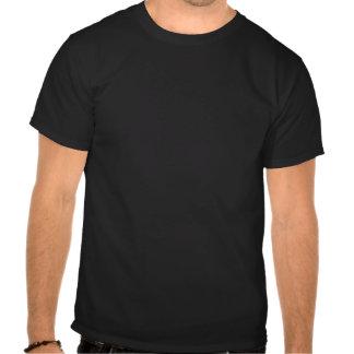 ''All is lost'' Dios_existe_camiseta-rcacdec6008244dff95698a02e0c725f5_va6lr_324