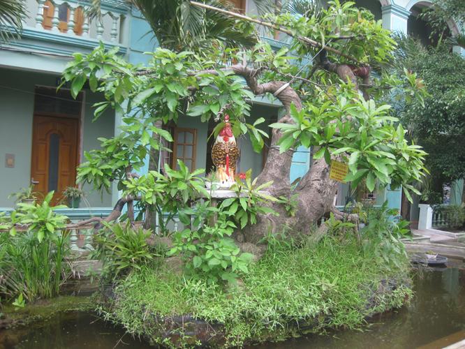 Bán cây lộc vừng: Cá SẤU vờn mồi - Làng ẩm thực Hoàng Gia Nam Định 201304161405_img_3468