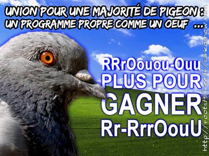 Le CV de Sarkozy, inattendu candidat à la présidentielle - Page 2 Pigeon2012