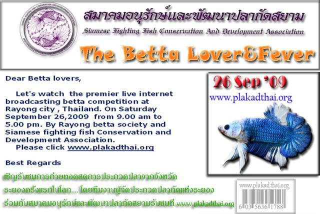 Incroyable !!! Concours International Live sur le net !!! Banner5