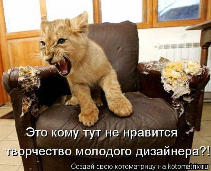 Позитивчик))) Kotomatrix_12