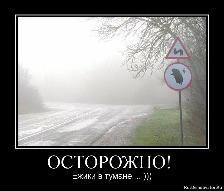 подборка от стасевича - Страница 2 2012110123353161