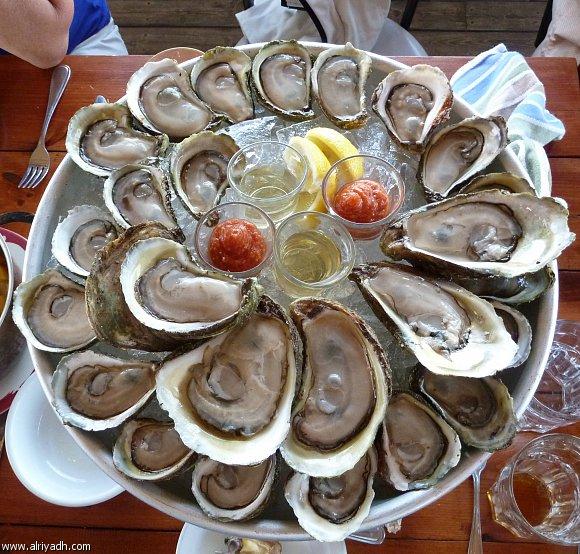 فوائد الرخويات البحرية 015296895069