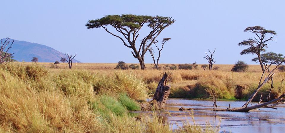 تعرفوا على أجمل الأماكن السياحية في تنزانيا 20161128-174144349609534