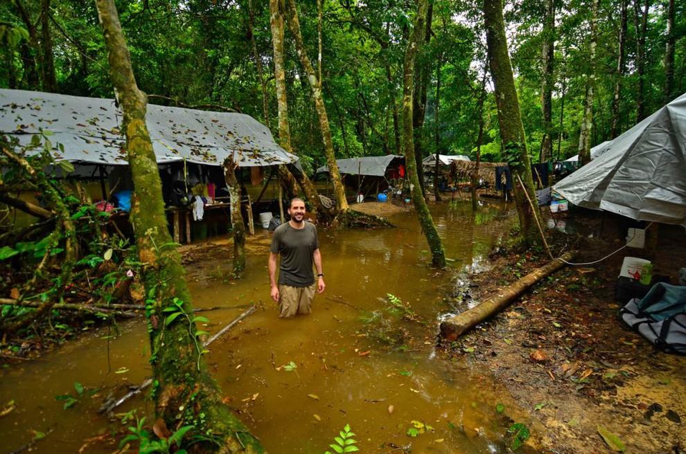 Las selvas de Surinam 6813d62387bf5b9b687edaef0e3d8d63