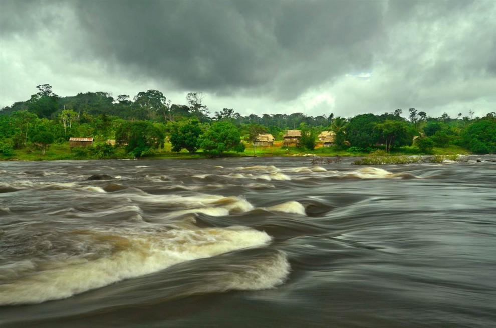 Las selvas de Surinam E3c4e5efdf246e8e63ed8f7f2085c044