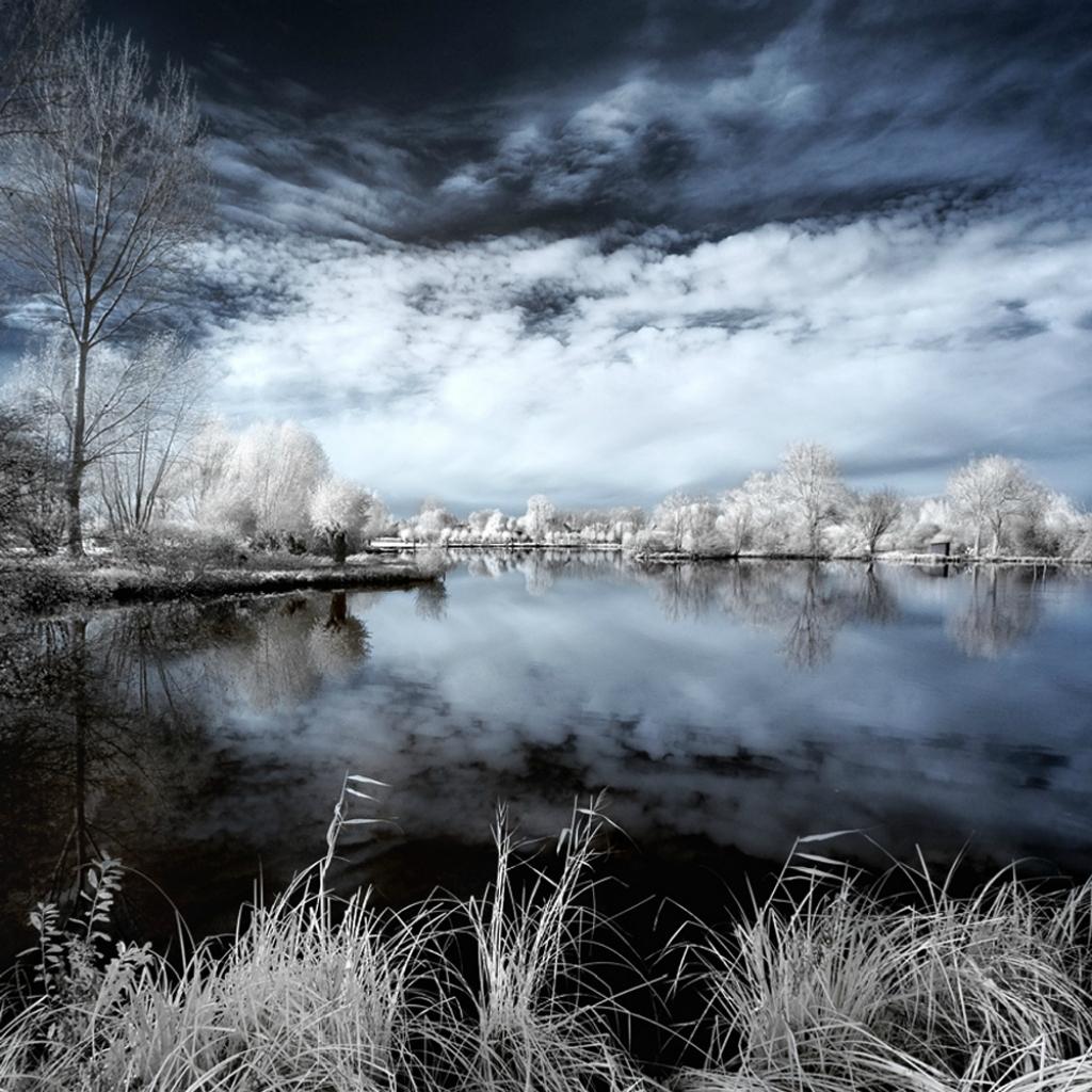 Сказочный мир в инфракрасном свете  0_85fdf_f4d0fb3c_orig
