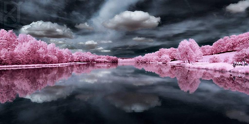 Сказочный мир в инфракрасном свете  Skazochnyj-mir-v-infrakrasnom-svete-1