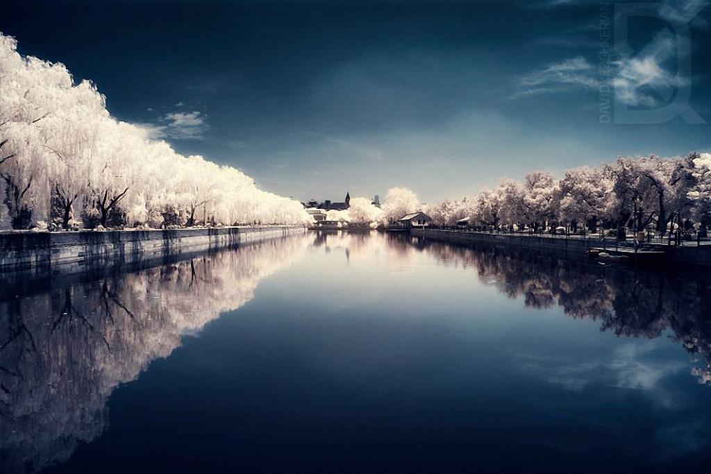 Сказочный мир в инфракрасном свете  Skazochnyj-mir-v-infrakrasnom-svete-11