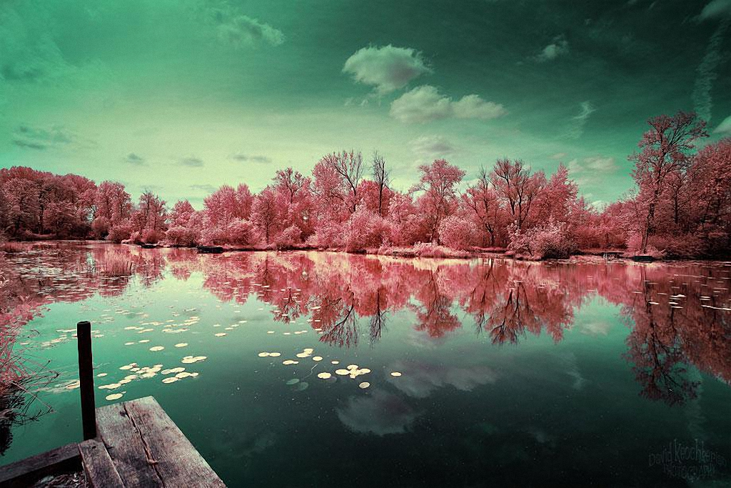 Сказочный мир в инфракрасном свете  Skazochnyj-mir-v-infrakrasnom-svete-6