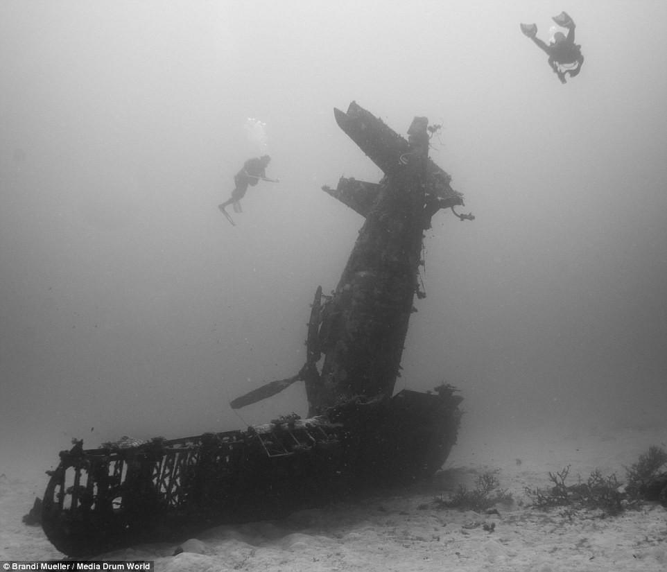 Cimetière d'avions de la WW2 magnifiques photos sous-marine 5c7d04e299b0ac3fd0479a41a30b1a3b