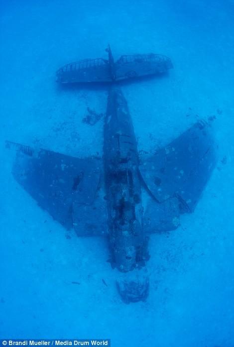 Cimetière d'avions de la WW2 magnifiques photos sous-marine A389f8420fb8fb04a969c44852b78381