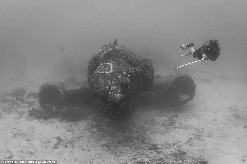 Cimetière d'avions de la WW2 magnifiques photos sous-marine Cf15c0f7c3617d268cc792631774b7d1