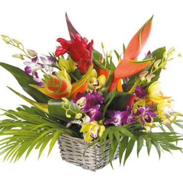Anniversaire JZL Le-bouquet-paradis-de-bouquet-nantais-2843790imlnr_2041