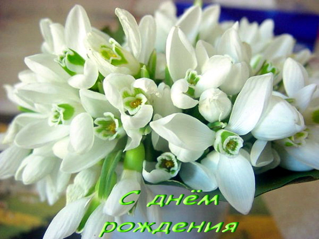 Поздравляем Vasilina с Днём рождения! - Страница 2 534421b0e732d447d8c2e1704b54d77f_4596