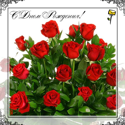 Поздравляем С ДНЕМ РОЖДЕНИЯ Екатерину Козловских Orig_5a4fc87f82749cd7680d598da1ad2800
