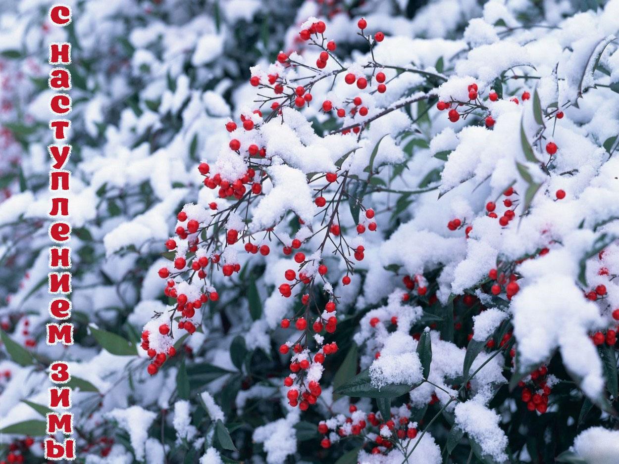 Зима... Морозная и снежная, для кого-то долгожданная, а кем-то не очень любимая, но бесспорно – прекрасная.  - Страница 2 Orig_b510489b1c297def9d472ad7382ca06c