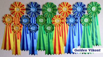 Наградные розетки на заказ от Golden Vikont - Страница 7 EBtqY