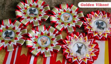 Наградные розетки на заказ от Golden Vikont - Страница 7 REeSW