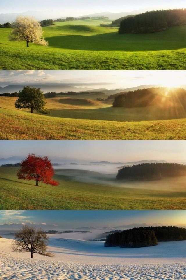 Необыкновенные и просто обыкновенные фото - Страница 6 13543072
