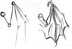 Рисуем крылья (урок) 648f782480ae